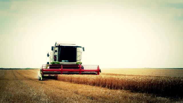 Combine harvester video