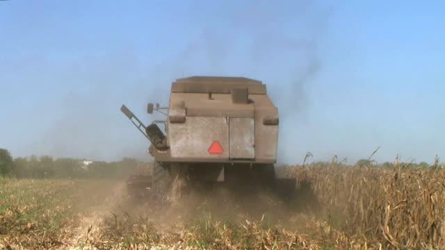 Combine Harvesting Corn 04 video