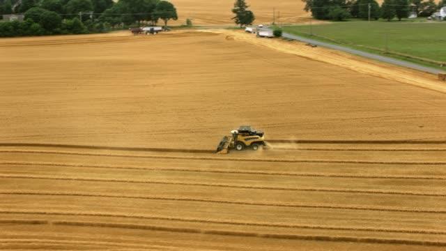vidéos et rushes de aerial combine la récolte de céréales - équipement agricole