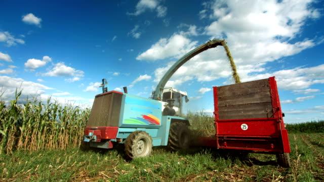 Combine Harvesting The Corn