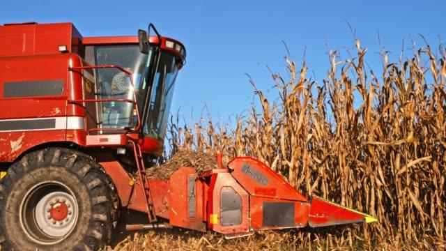 SLO MO Combine header reaping corn stalks