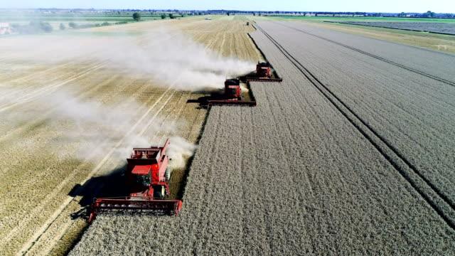 vidéos et rushes de combiner des machines de récolte de champ - équipement agricole