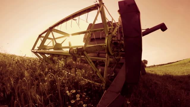 Combine working on a wheat field video