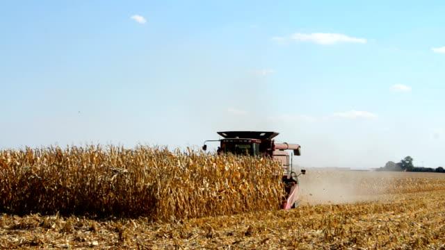 combining corn video
