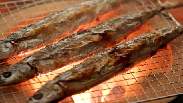 燃焼サバグランドラピッズ - 魚点の映像素材/bロール