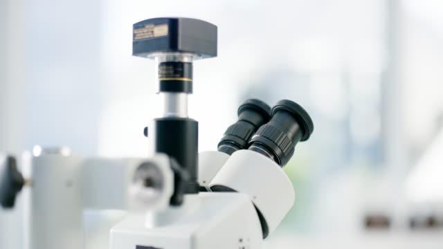 vídeos y material grabado en eventos de stock de ven a echar un vistazo - investigación científica