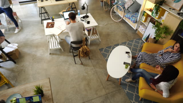 Comfortable Office Atmosphere Satisfied Freelance Workers Working Together in Co-working Space coworking stock videos & royalty-free footage