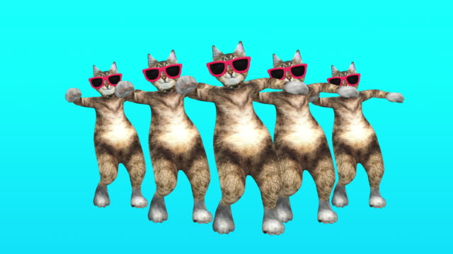 Video Comic Pussycat Moves in Blue Environment in Stylish Rhythm