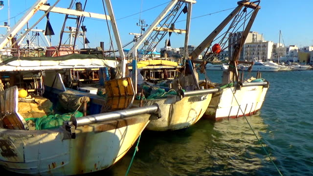 Commercial Fishing Boat At Wharf
