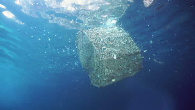 Commercial fishing industry pollution in the sea Southeast Asia