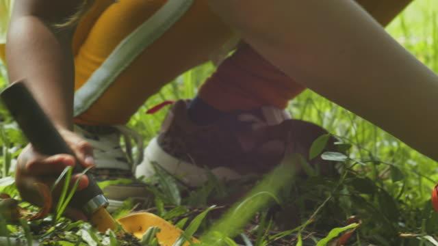 topluluk ağaç dikme - bahçe ekipmanları stok videoları ve detay görüntü çekimi