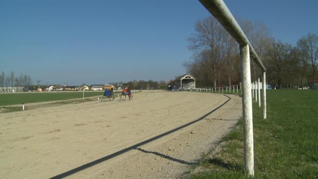hd slow-motion: competition between two horses - racehorse track bildbanksvideor och videomaterial från bakom kulisserna
