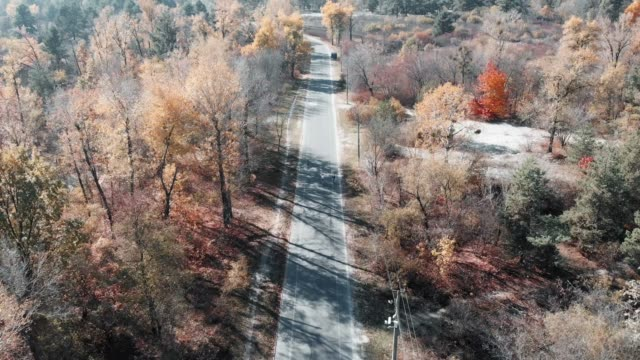 Competition of two young male cyclists on road bikes. Professional riders on bicycles are sprinting at empty road in autumn city park in city center, aerial drone view. Kyiv, Ukraine