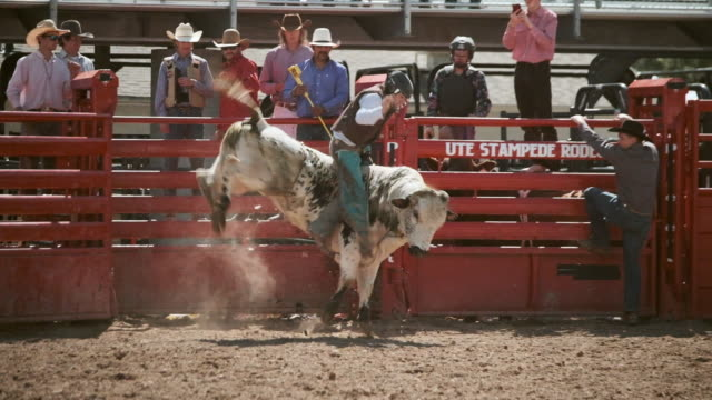 Competition Rodeo Bull Riding