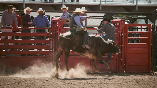 vídeos y material grabado en eventos de stock de toro de rodeo de la competición del montar a caballo - rodeo