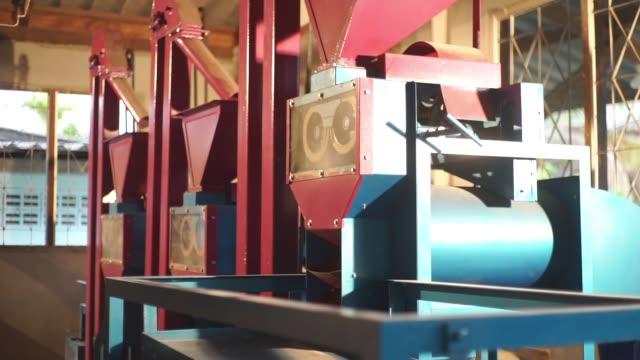 komplett uppsättning kombinerad brunt ris fräs maskin i hushållet. - ris spannmålsväxt bildbanksvideor och videomaterial från bakom kulisserna