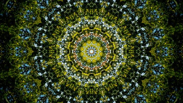 komplexa kaledisocopic natur mandala - mandala bildbanksvideor och videomaterial från bakom kulisserna