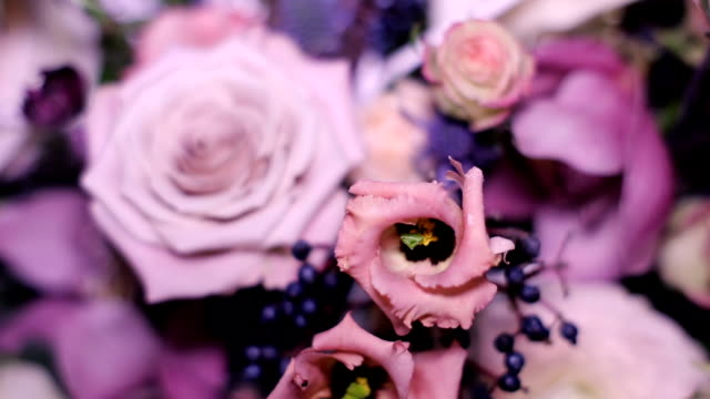 composition of colors of roses standing video