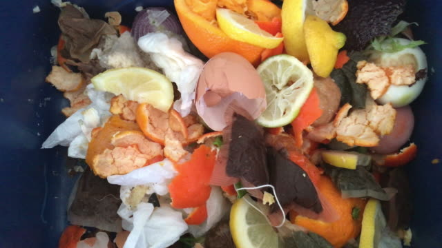 Compost container full of food scraps and waste video