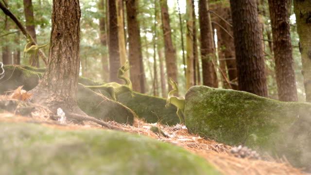 Pacote de Compsognathus perto de local de nidificação na floresta de Jurassic atrasado - vídeo