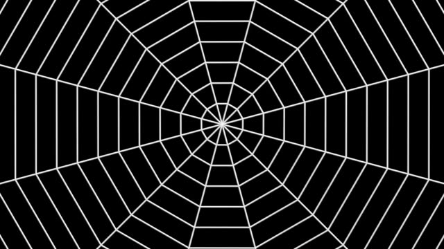 Computer generated animation of psychedelic shapes and Spider web