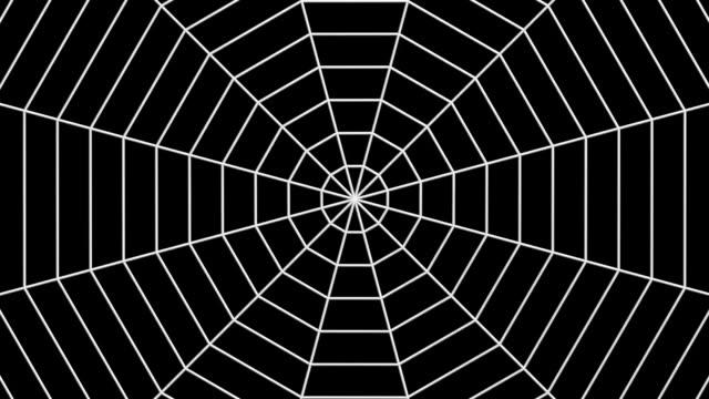 datorgenererade animation av psykedeliska former och spider web - spindel arachnid bildbanksvideor och videomaterial från bakom kulisserna