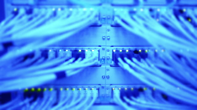 Computer Network Switch With Blinking Lights (Blue Toned) video