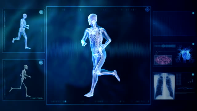 Computer X-raying the human body. Running. video
