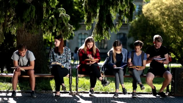 Concentrated classmates learning together outdoors video