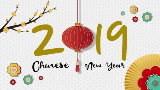 Concept of Chinese New Year 2019 Concept of Chinese New Year 2019 chinese new year stock videos & royalty-free footage