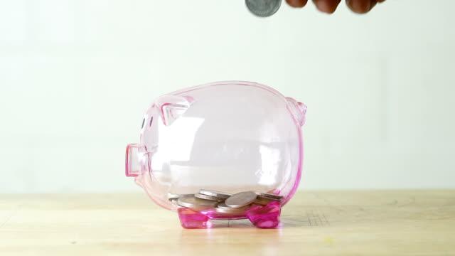 concept saving money for buy car in the future, closeup of hand inserting coin money into piggy bank - salvadanaio video stock e b–roll