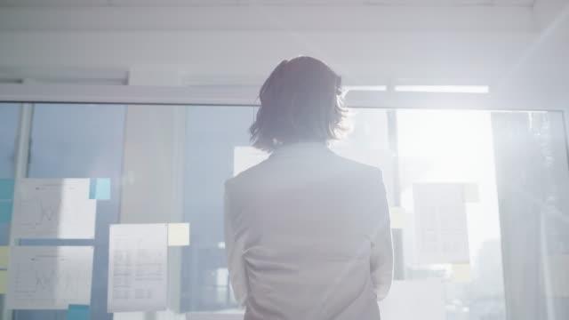 einen weiteren perfekten plan - generaldirektor oberes management stock-videos und b-roll-filmmaterial