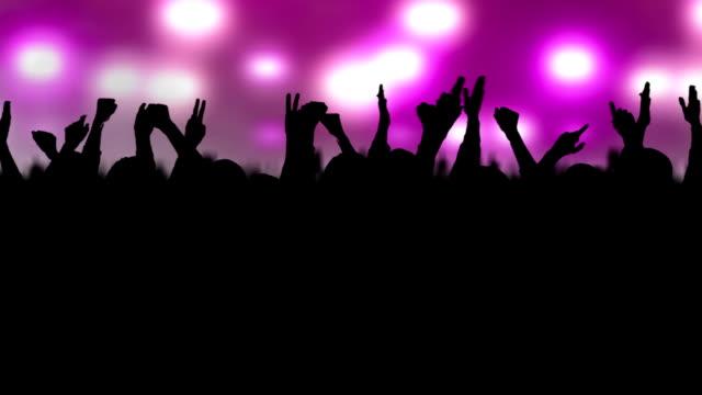 folla concerto - braccio umano video stock e b–roll