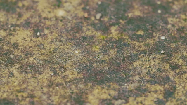 Concrete floor texture in macro, smooth dolly shot