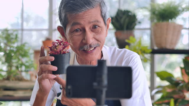 Confidence asian senior men age 62 year old speaking in front of camera for vlog.Elder man working as blogger while recording video explaining houseplants for sell by streaming live on social media at home. video