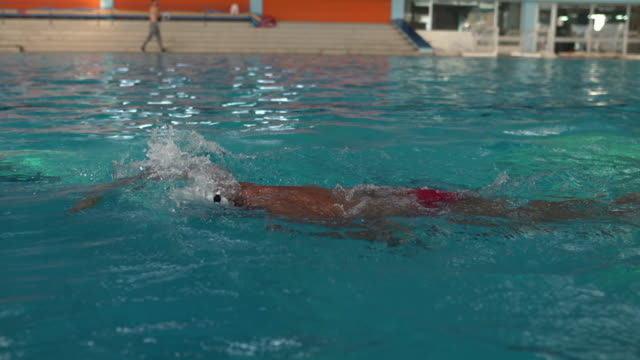 Confidence swimmer doing breaststroke swimming Senior professional swimmer swimming in pool sportsperson stock videos & royalty-free footage