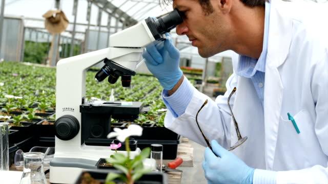 Confident botanist studies plant life in a nursery video