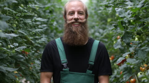vídeos de stock e filmes b-roll de confident farmer standing in greenhouse - agricultor