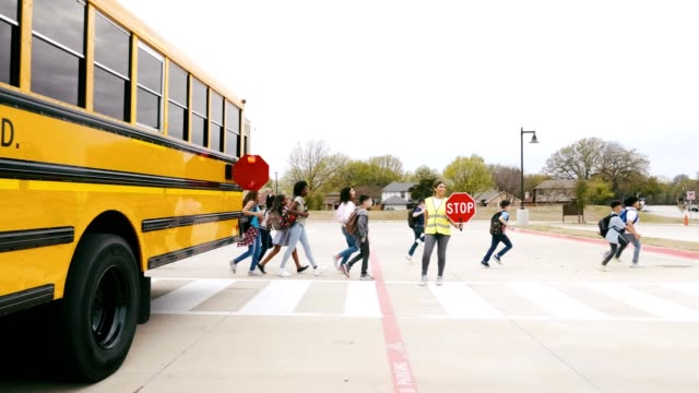 Confident female school bus driver helps children cross street