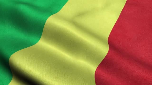 Congo Flag Seamless Looping Waving Animation video