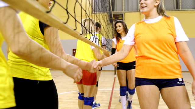 Congrats on winning Young beautiful women handshaking after the game underneath the volleyball net volleyball sport stock videos & royalty-free footage