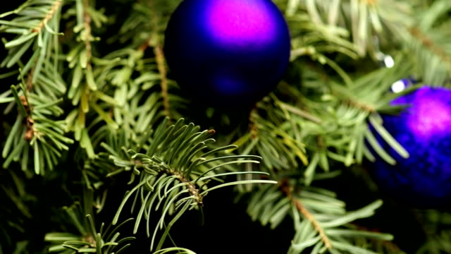 Coniferous Tree with Colorful Balls video