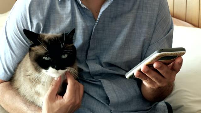consoling his cat - soltanto un animale video stock e b–roll