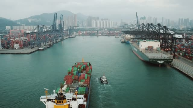 container cargo frachtschiff terminal in hongkong, china - handelshafen stock-videos und b-roll-filmmaterial