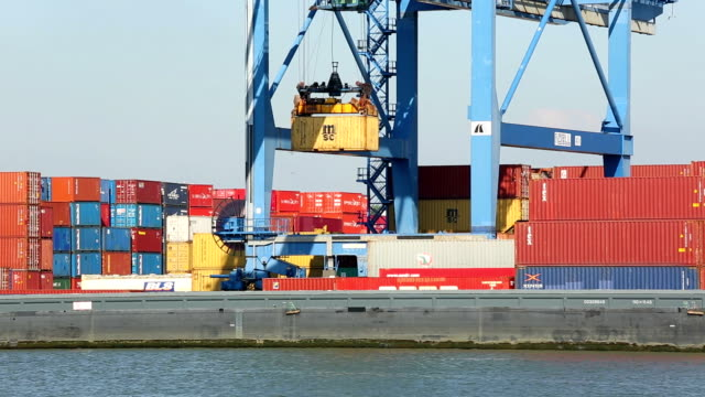 Container Harbor video