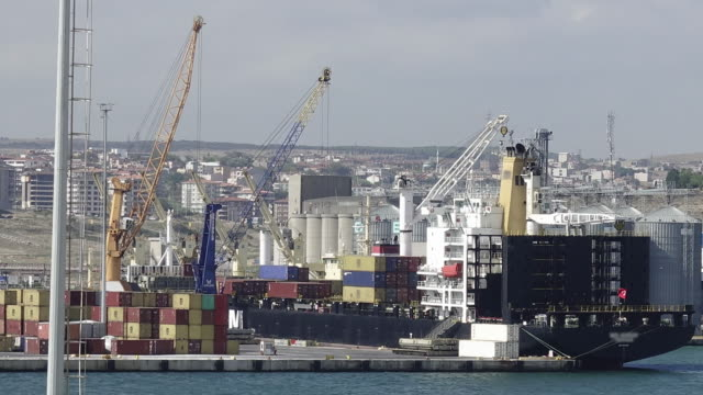 Container ship loading at dock.