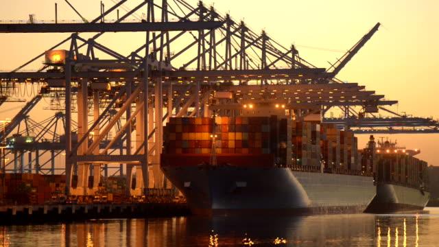 containerfartyg lossning - shipping sunset bildbanksvideor och videomaterial från bakom kulisserna