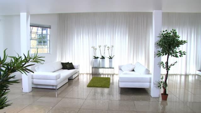 Contemporary modern home video