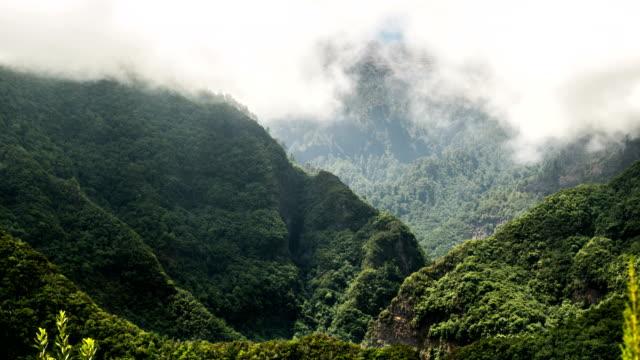 kontur der berge mit beweglichen nebel. zeitraffer - kontrastreich stock-videos und b-roll-filmmaterial