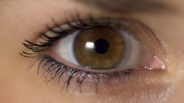 stockvideo's en b-roll-footage met slow motion: contraction of the pupil - menselijk oog